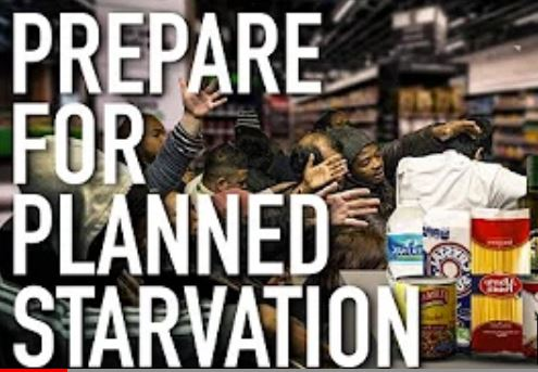 Planned Starvation And Food Shortage Coming As Food Prices Rise To Dangerous Levels !!